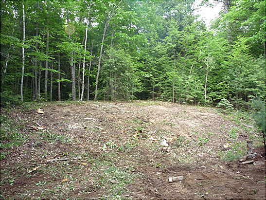 View Tree Removal and Land Clearing in Sandown, NH files